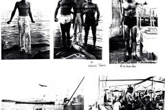 photos from Henri L. Sans - 1
